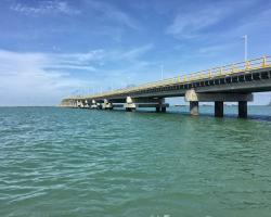 """Rehabilitación de pilotes en puente """"El Zacatal"""""""